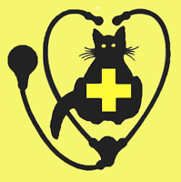 Veterinary Assistant at Feline-exclusive Vet Hospital