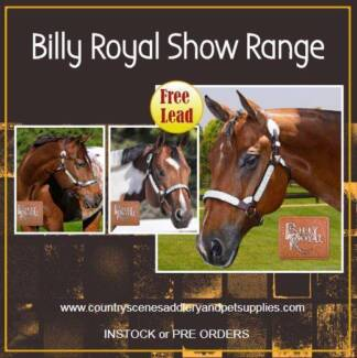 Quality high end show halters