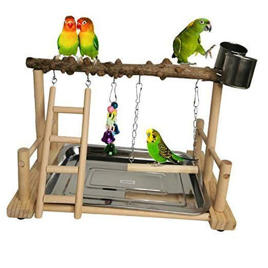 Parrot Playground Bird Playstand Wood Exercise Play Perch Gym with Feeder