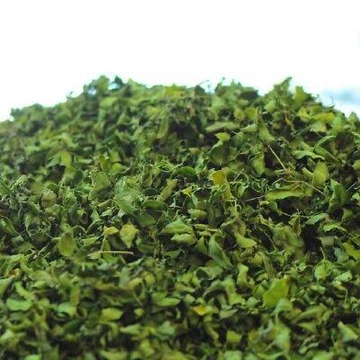 100 g Bio Moringa aus Teneriffa Blattschnitt Tee Rohkostqualität deutscher Anbau