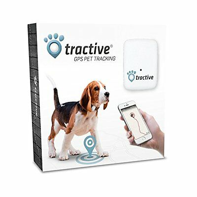 Tractive GPS Pet Tracker 2.0 by 1.6 by 0.6-Inch