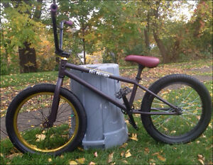 Custom 2015 GT Bmx London Ontario image 1