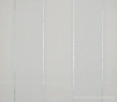 Rasch Tapete Vlies Vliestapete 456332 Streifen gestreift silber weiß