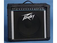 Peavey Exprees 112