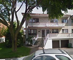 Appartement 3 1/2 à louer à Saint-Léonard