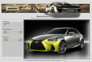 Paint Protection Website