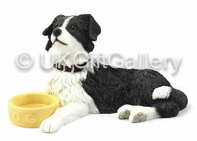 BORDER COLLIE Sheepdog Dog Pup With Bowl Ornament Figurine by Leonardo NEW BOXED