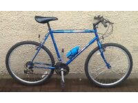 "Bike/Bicycle.GENTS APOLLO "" 3000 "" MOUNTAIN BIKE"