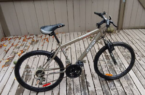Boy's Mountain Bike
