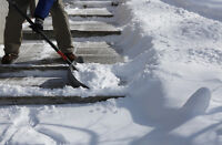 Snow Shovelling ,shoveling , side walk crew wanted