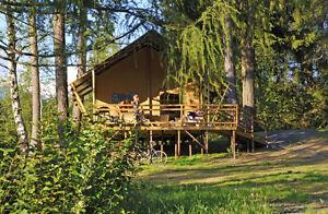 Glamping lodge, safari tent, barnwood interior, resort