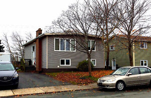 House with Basement Apartment