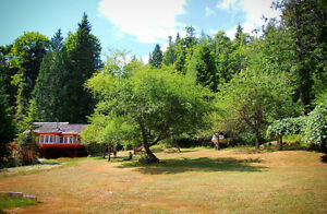 """""""Sky View"""" Gambier Estate - Home, Cabin, Sauna on 12 Acres"""