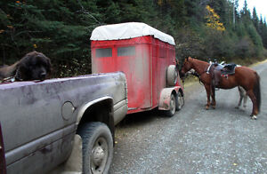 2-horse straight haul trailer- great condition- all ready to go Williams Lake Cariboo Area image 9