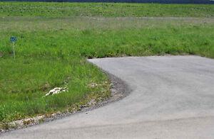 Country Estate Living in Spring Meadow Estates! Edmonton Edmonton Area image 3