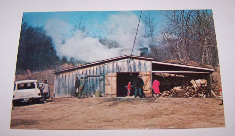 Vintage Maple Syrup Camp Postcard PARKE COUNTY TANGIER INDIANA Ferris Heath