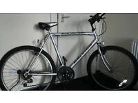 Max Raleigh Mountain bike