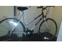Pioneer ladies bike