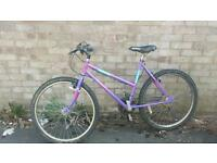 Ladies 26 inch mountain bike