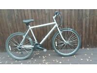 Grey mountain bike