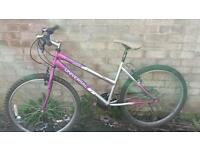 26 inch wheels ladies mountain bike
