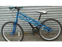Blue Mountain bike gt