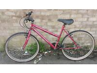 Ladies 26 inch mountain bike