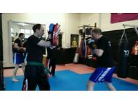 Martial arts introductory courses