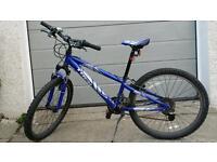 """Trek mt220 bike for boy or girl 24"""" wheels"""