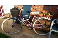 Ladies retro Raleigh caprice bike with basket