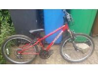 Boys & Girls appollo Bikes