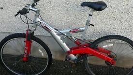 Carrara Banshee mountain bike