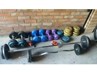 Gym bench and whaights