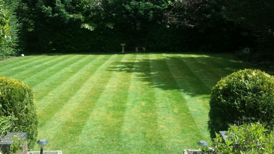 Landscape Gardeners West Midlands Grass cutting hedges free quote perfect mowing trees landscapes grass cutting hedges free quote perfect mowing trees landscapes all aspects of gardening in coventry west midlands gumtree workwithnaturefo