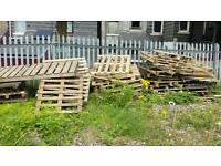 Free scrap fire wood free to collect