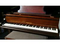 Challen baby grand for sale