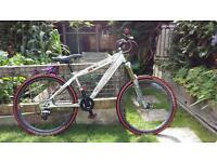 Saracen xile trail/jump bike