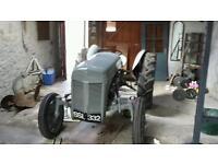 Massy ferguson gray tractor