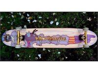 Longboard Skateboard Cruiser. Rare Lib tech