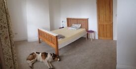 Huge Double room to rent in renovated home