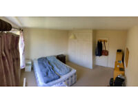 Large double room available in friendly household