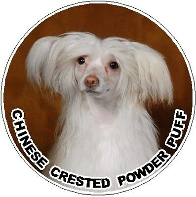 2 Chinese Crested Powder Puff Car Stickers by Starprint