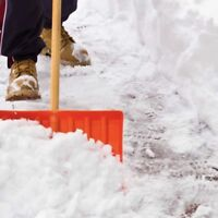 Looking for a snow removal service in Charlottetown
