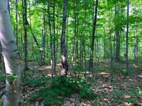 """2 ACRE MANITOULIN LOT, IN THE """"HEART OF DEER COUNTRY"""""""