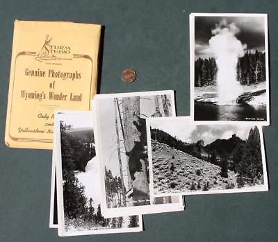 1950-60s Era Cody,Wyoming Yellowstone National Park 30 photo set-Bears-Geysers!