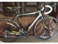 Boardman Team Carbon Road Racing Bike
