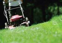 Lawn maintenance / Fall clean ups / Snow removal NDG