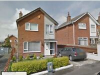 TO LET - 3 bedroom detached house with garage - CLOVERHILL, DRUMAHOE, L'DERRY