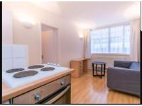1 Bed Flat + Lounge and kitchen for rent