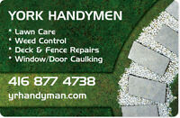 YORK REGION Handyman Available Reliable & Affordable
